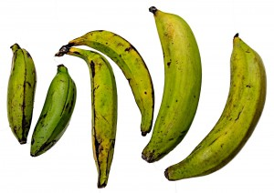 Varieties of plantain