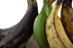 Plantains in various stages of ripeness