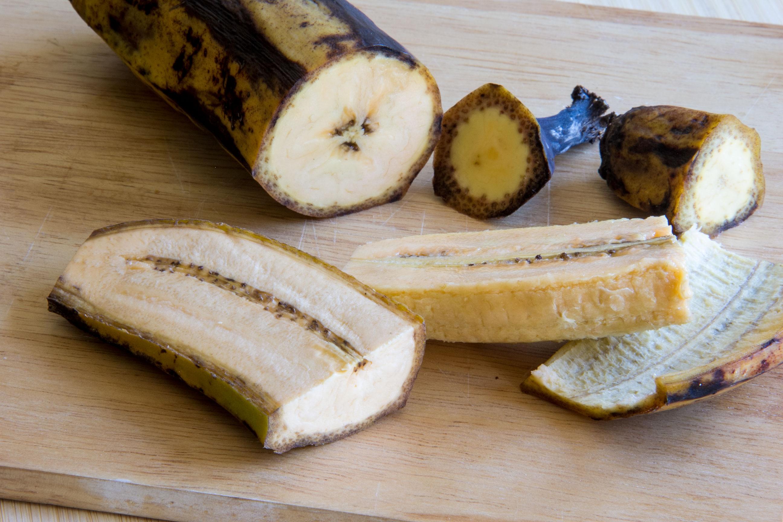 plantain ripeness IMG 8512